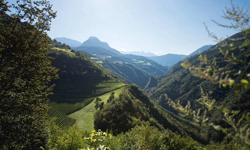 Tenuta Tiefenbrunner in Alto Adige