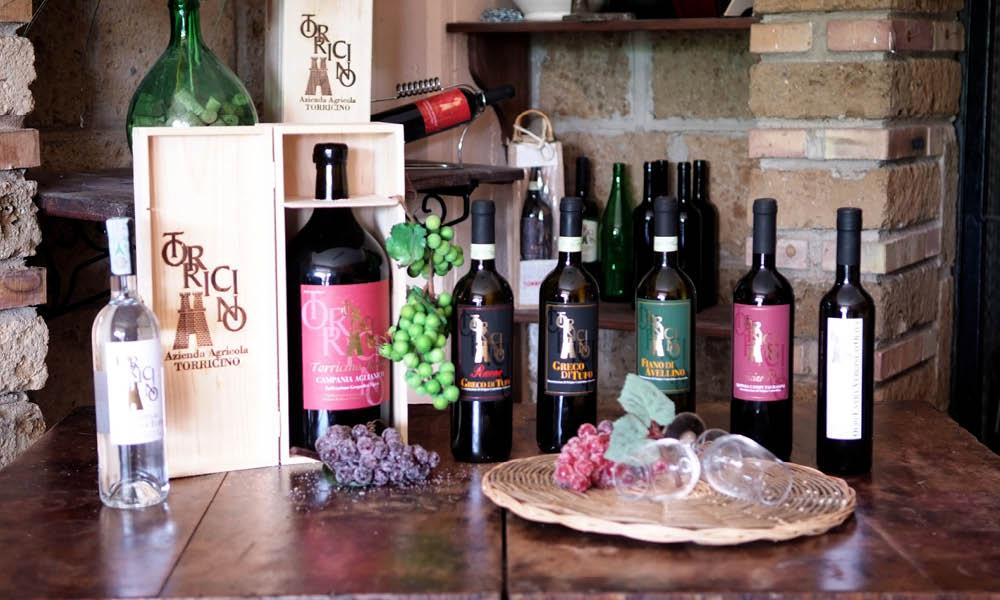 Torricino Campania wine tasting