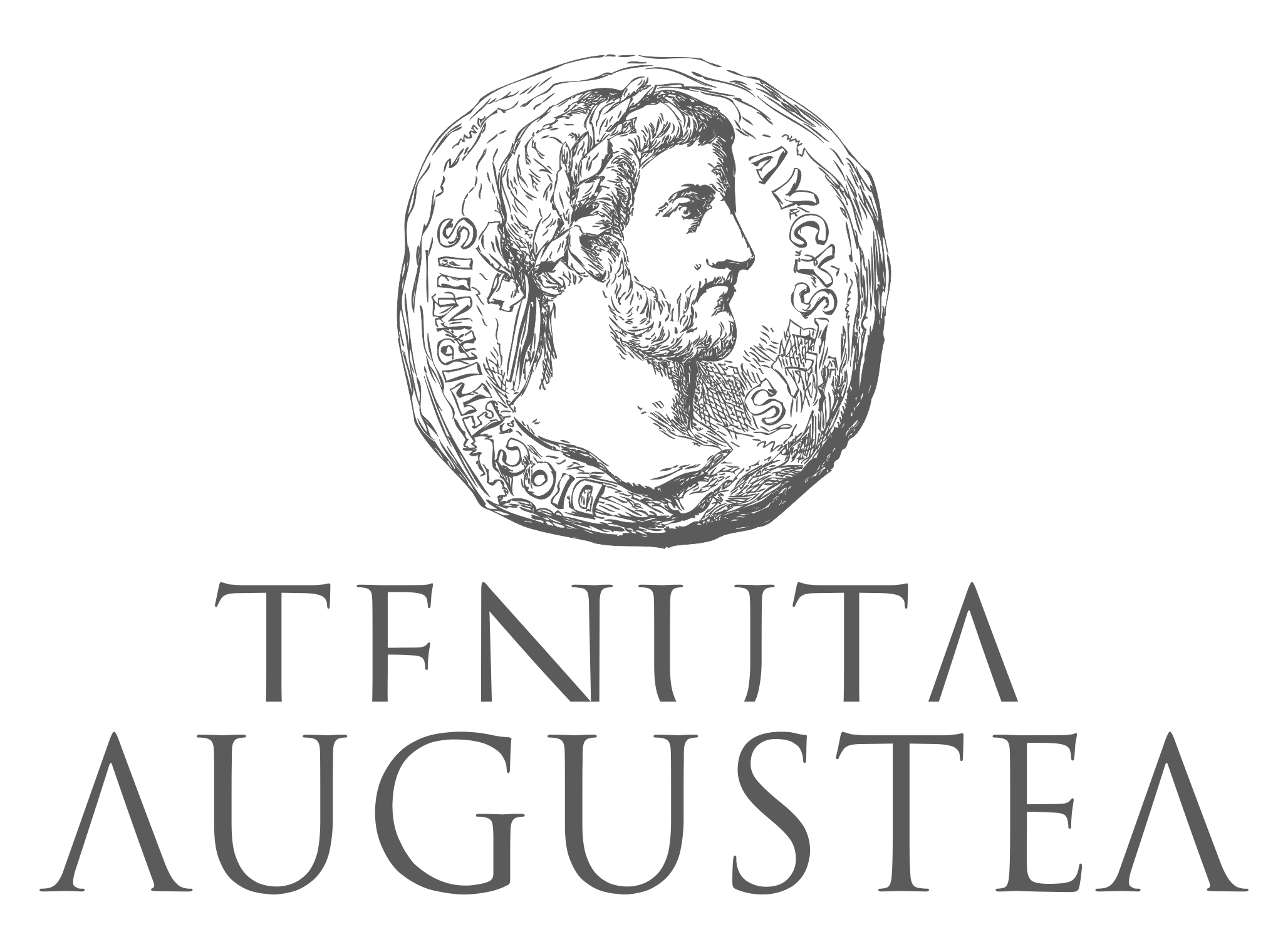 logo augustea nocerino wines